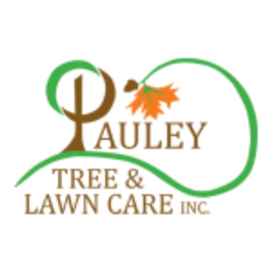 tree and lawn care in New Canaan