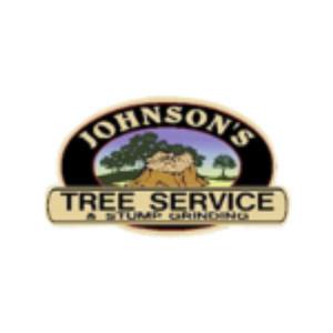 Tree Service Florida
