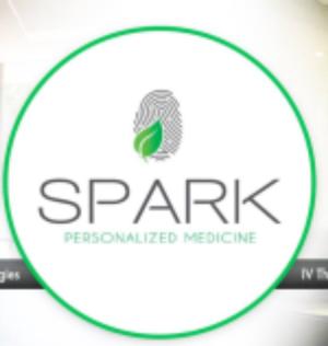 healthcare provider San Diego Spark