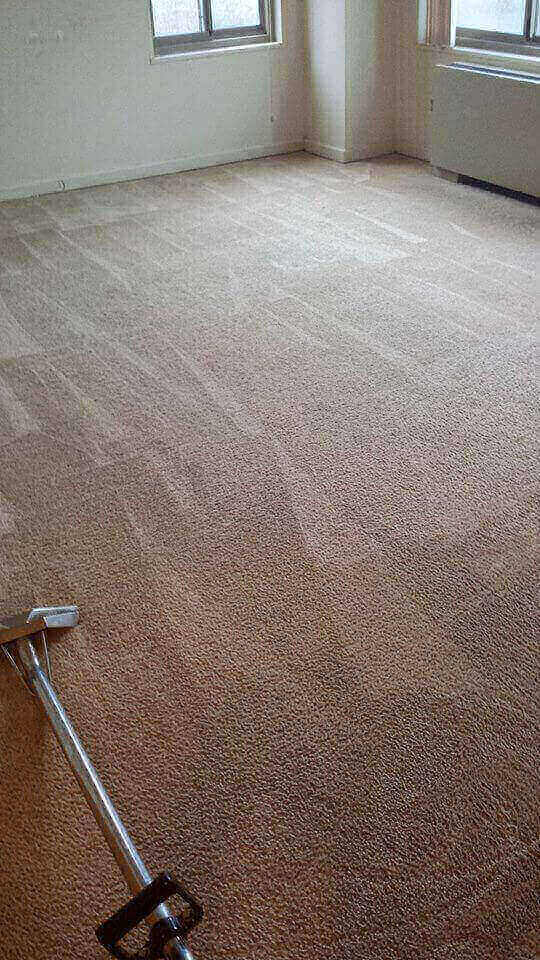 carpet  cleaning company Fairfax