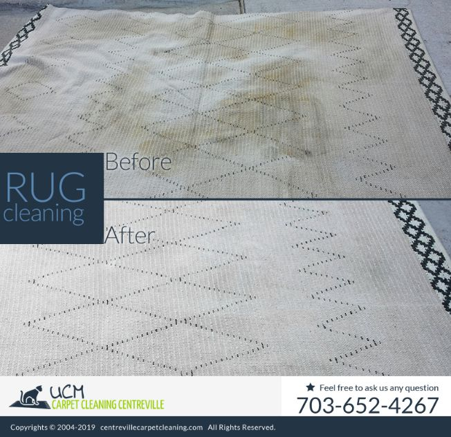 Area Rug Cleaning Service Centreville