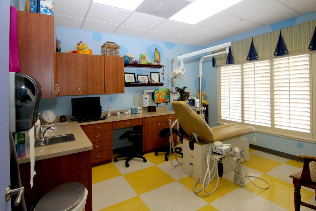Macaw themed operatory at Austin orthodontists and pediatric dentists Smiles of Austin
