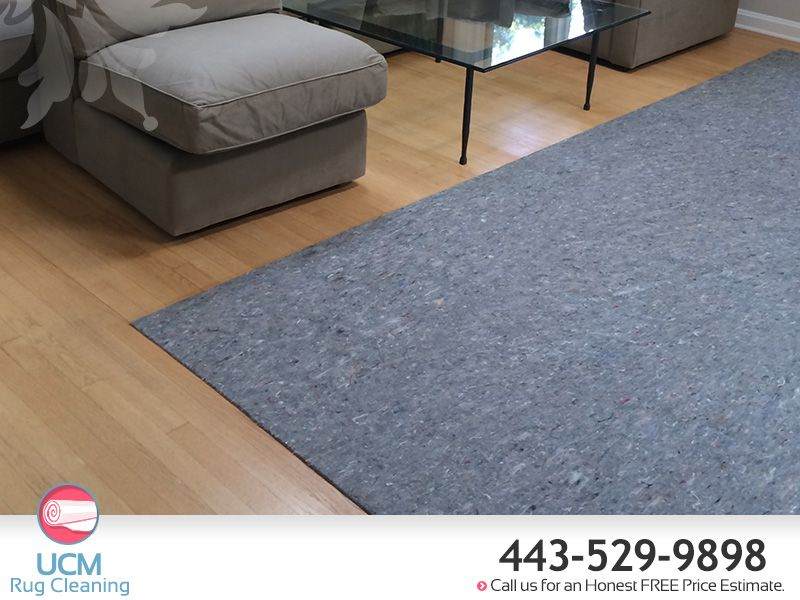 Living Room Rug Cleaning Company Baltimore