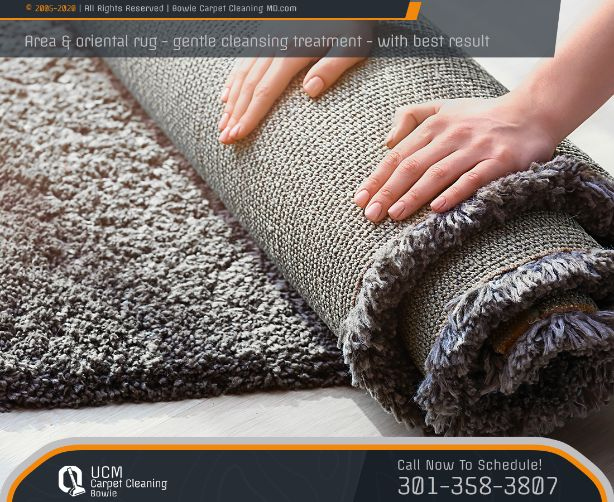 Area Rug Cleaning Company Bowie