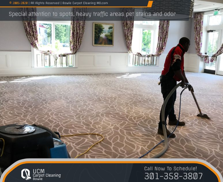 Deep Carpet And Upholstery Cleaning
