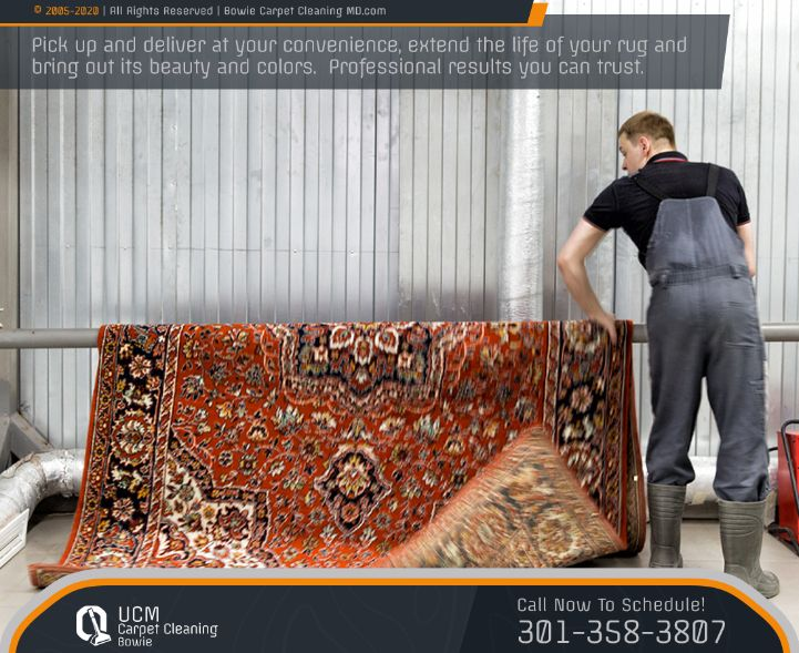 Rug Special Cleaning Treatment Services