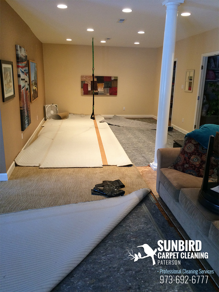 Carpet Replacement Services of Paterson