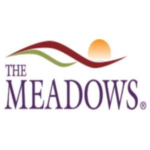 The Meadows Mental Healthcare Center