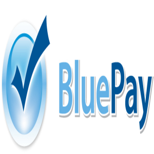 BluePay payment processing Illinois digital agency