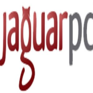 Jaguar Hosting LLC - VPS hosting & dedicated server hosting providers