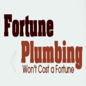 Fortune Plumbing Georgia plumbers