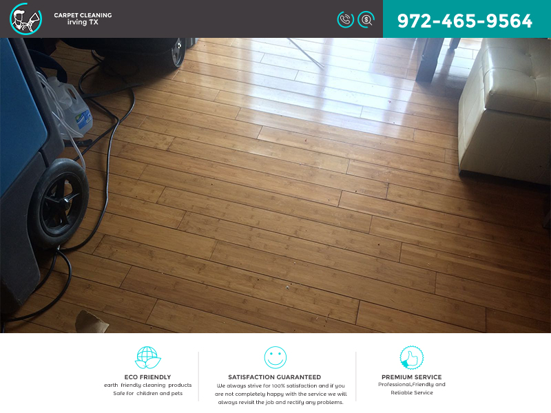 Carpet Cleaning Irving TX Cleaning business directory