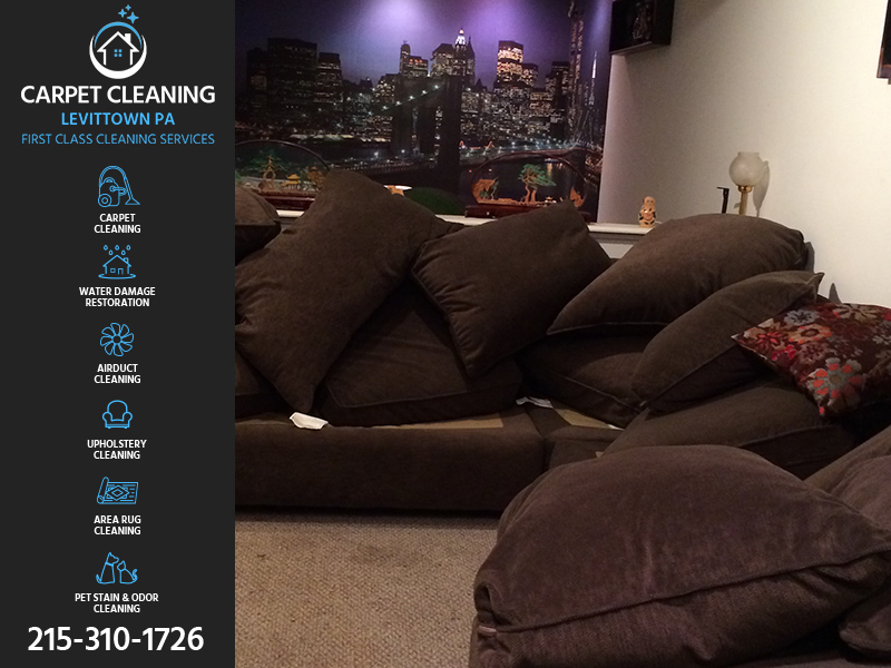 Carpet Cleaning Levittown upholstery cleaning directory