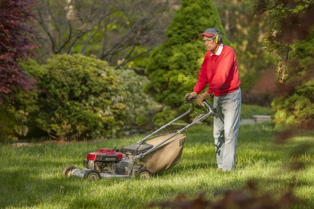 Landscaping Stamford CT landscaping directory